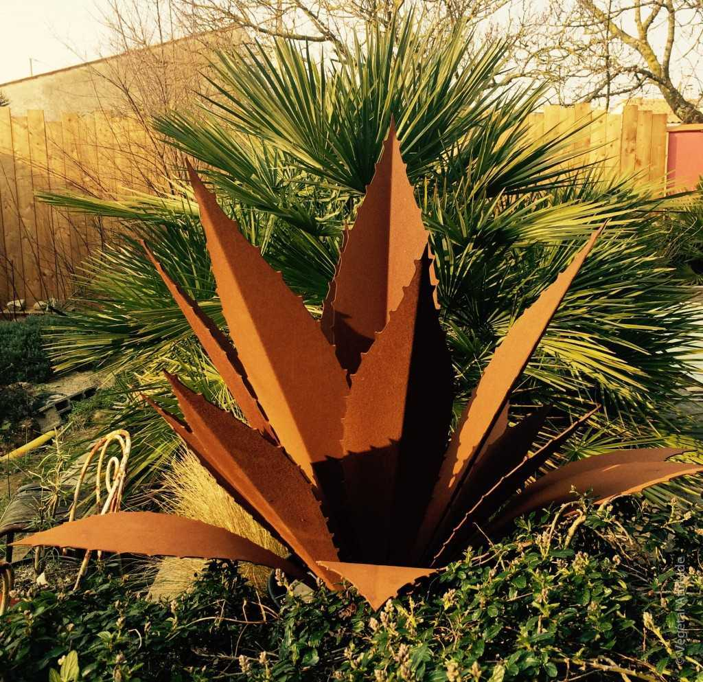 decoration jardin avec Agave acier corten