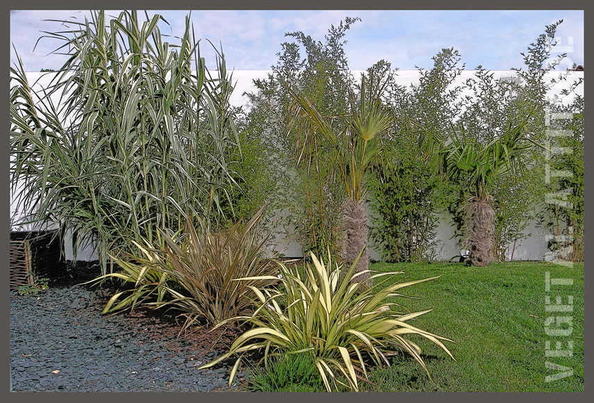 garden staging pot plante terrasse bois et trellis metal decoratif ile de ré