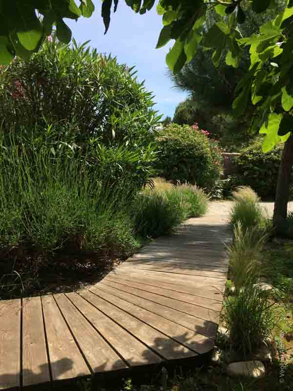 Creation D Allee De Jardin Paysagiste La Rochelle Ile De Re