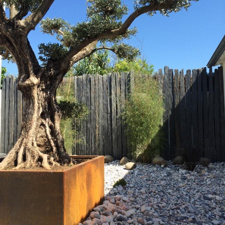 am nagement de jardin d 39 exception sainte marie de r. Black Bedroom Furniture Sets. Home Design Ideas