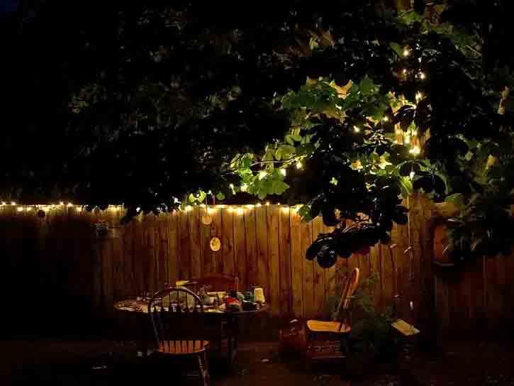 éclairage jardin de nuit